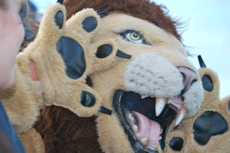 Bellarmine Lions defeat Peninsula Seahawks last Friday 26-14.