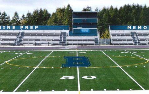 Memorial Field gets turf