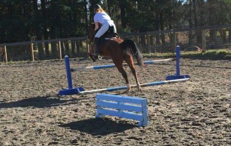 Lions ride horseback