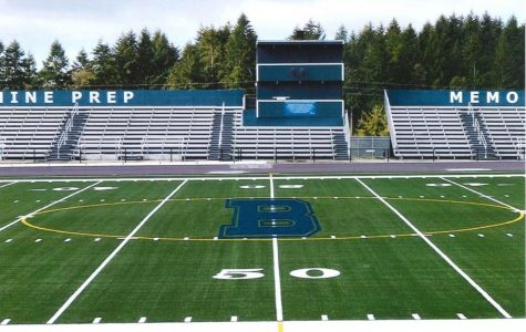Memorial Field gets turf