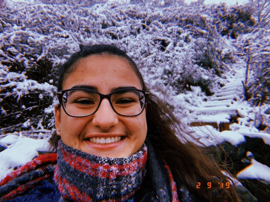 Aysan Razmjouy