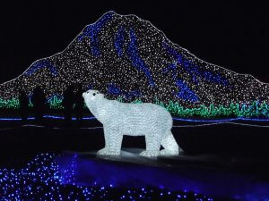 A festive light display sparkles at Zoolights.